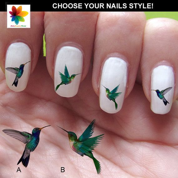 Hummingbird Nail Art Rarity Inspired